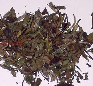 Herbata biała Pai Mu Tan z bambusem - 50g