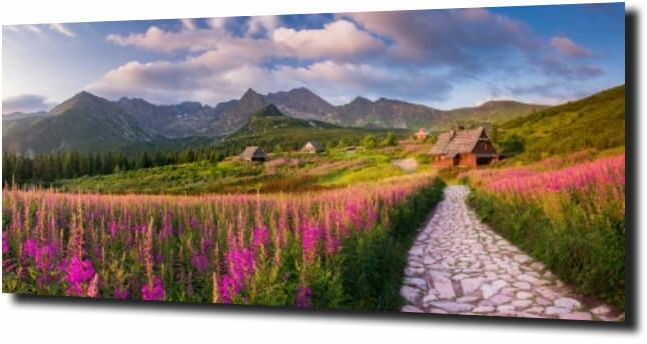 obraz na szkle Pole krokusów i górska chata