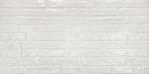ABK Street White Glossy 60x120