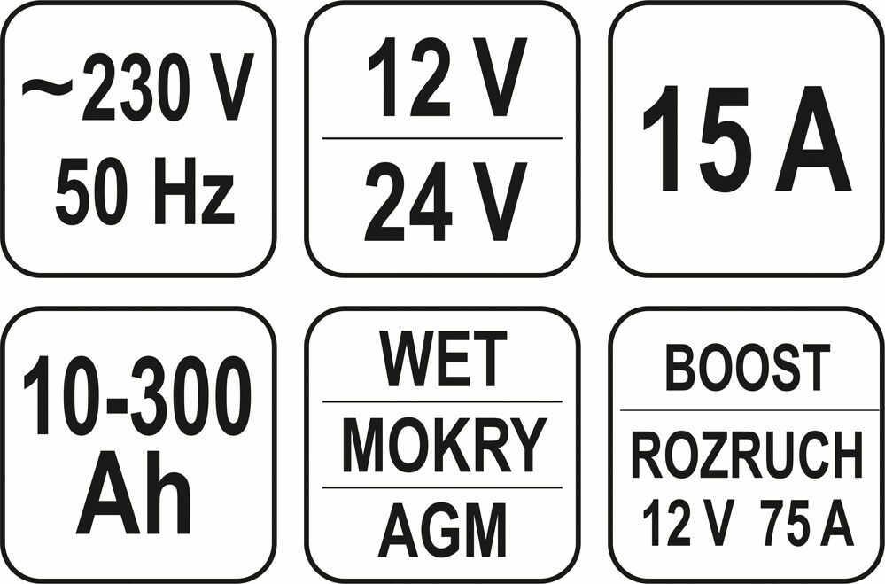 Prostownik z rozruchem Impulsowym 12V/24V 15A