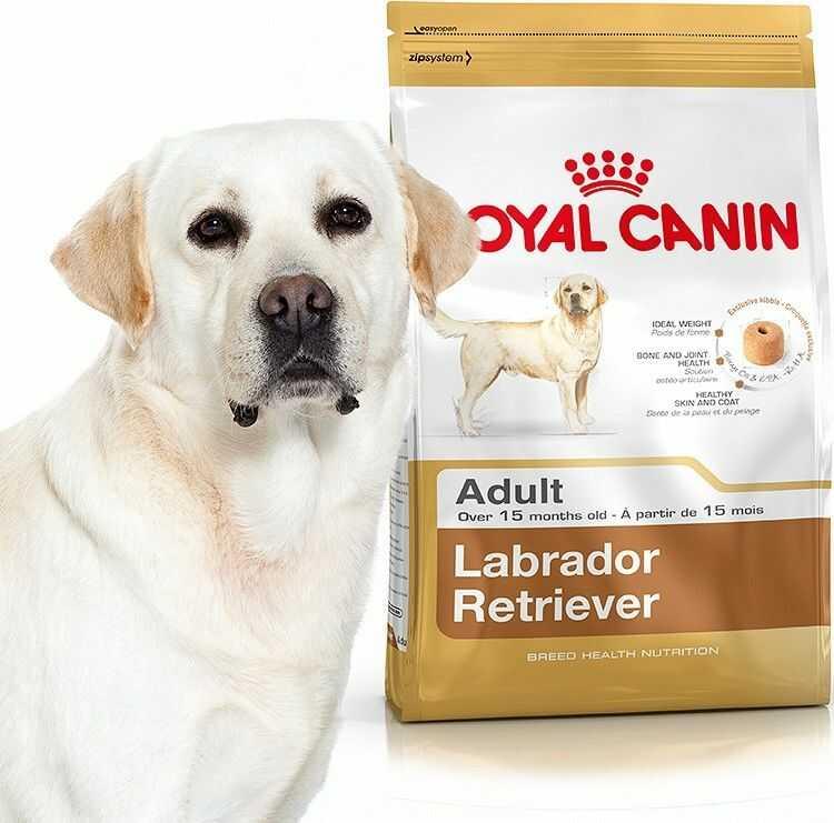 Royal Canin Adult Labrador Retriever 2x12kg