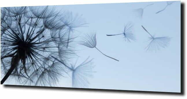 obraz na szkle, panel szklany Dmuchaawce 38