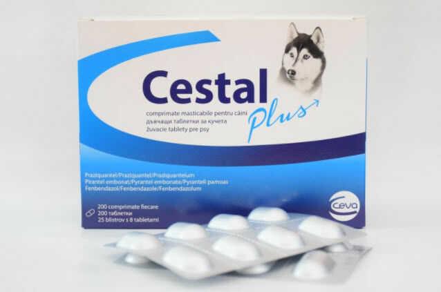 Cestal plus flavour blister 2 tabletki dla psów