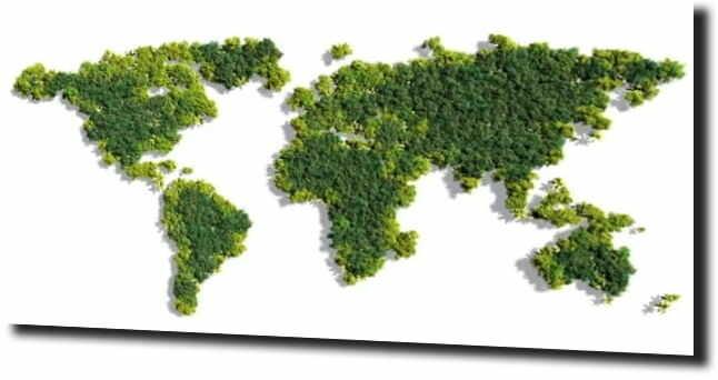 obraz na szkle, panel szklany Zielona mapa