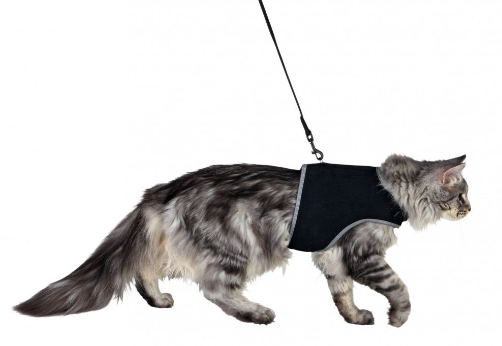 Uprząż XCat kamizelka dla kotów (trixie)