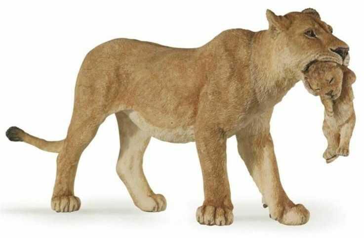 Lwica z młodym - PAPO