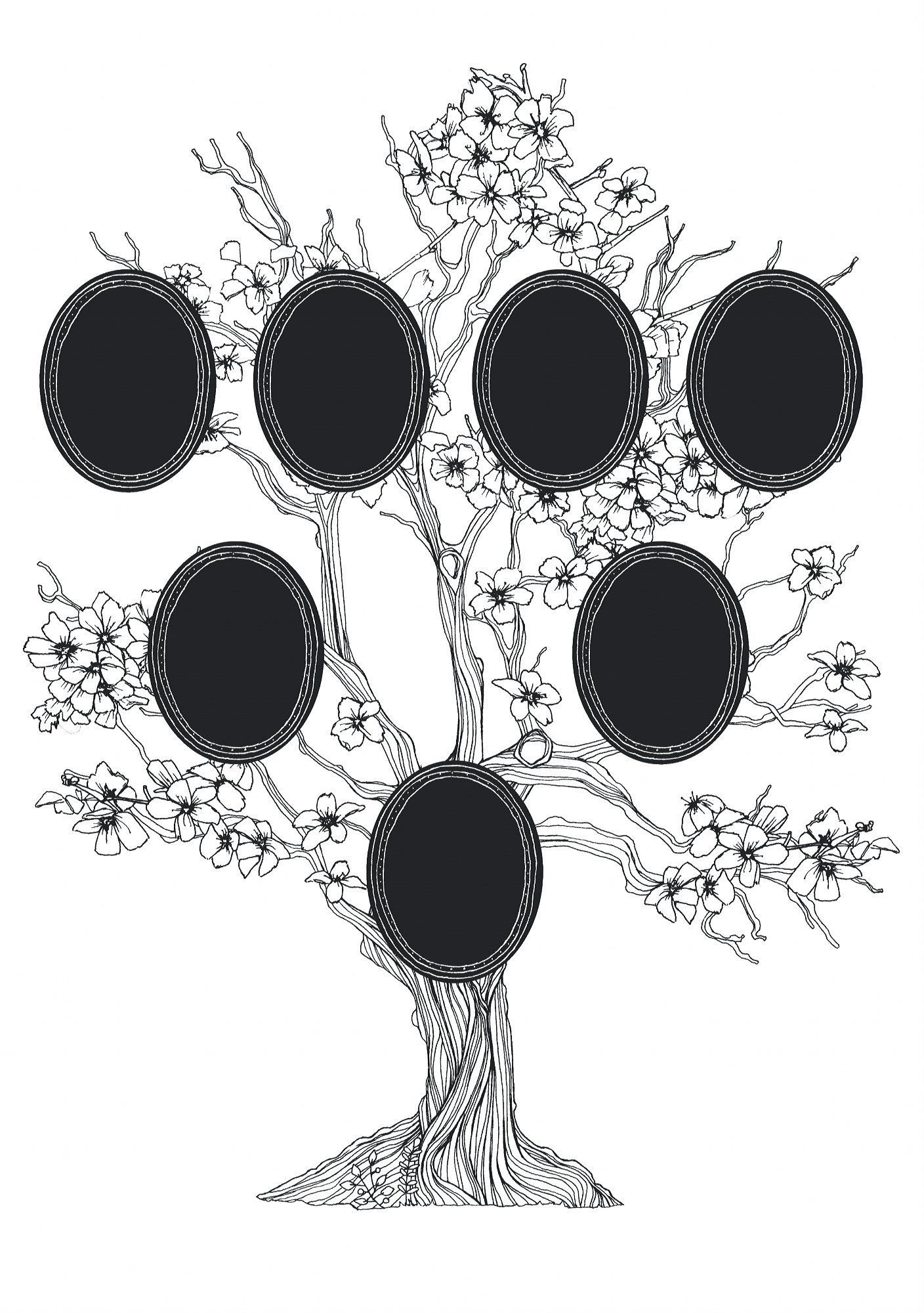 DecoPatch  ad023o  Maildor  wzór męski  naklejka ścienna  Lot de 2 Boże Narodzenie  34,5 x 49 cm  drzewo genealogiczne