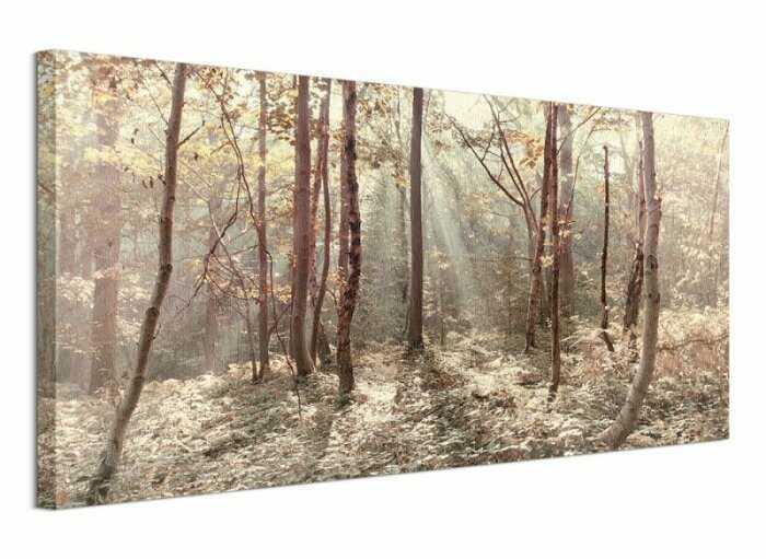 Autumn Leaves - Obraz na płótnie