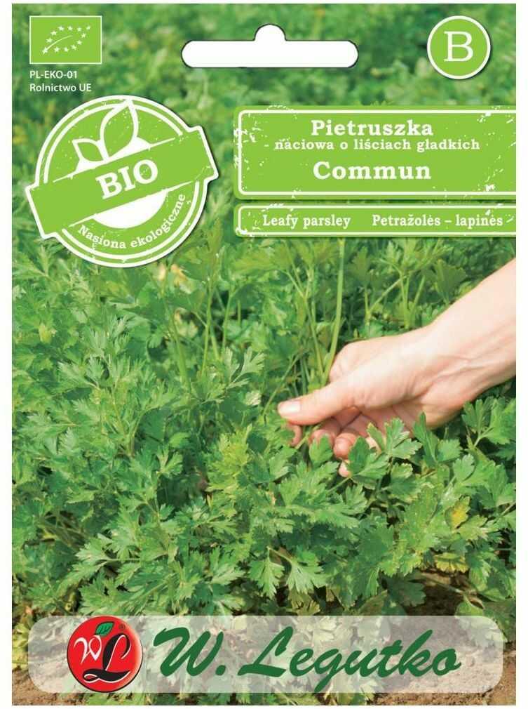 Pietruszka naciowa o liściach gładkich nasiona BIO Commun W. LEGUTKO