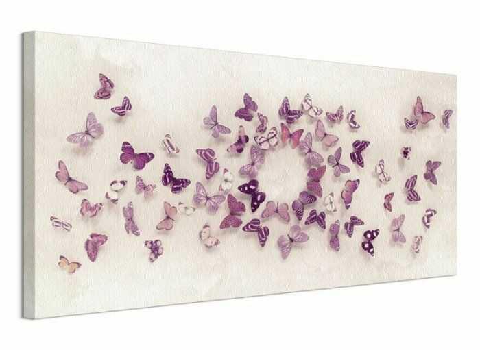 Obraz na płótnie - Motylki - Kaleidoscope of Butterflies - 100x50 cm