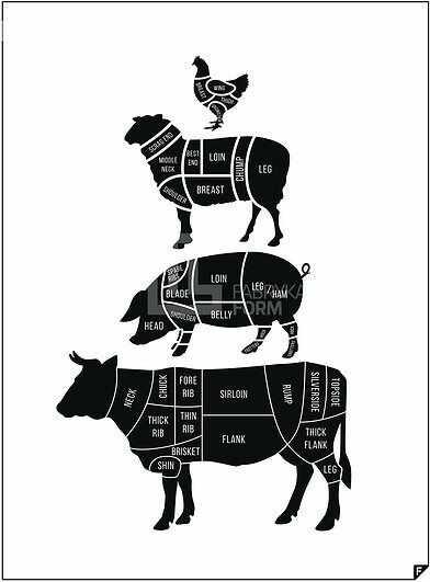 Plakat meat cuts ed. spring 2016 70 x 100 cm