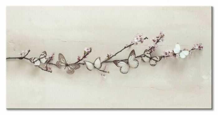 Obraz Motyle - Butterflies on Blossom - 100x50 cm