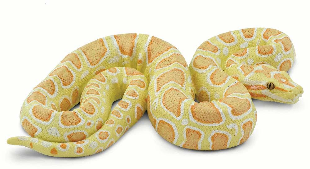 Safari - Python Albina Animals, różnokolorowy (S100250)