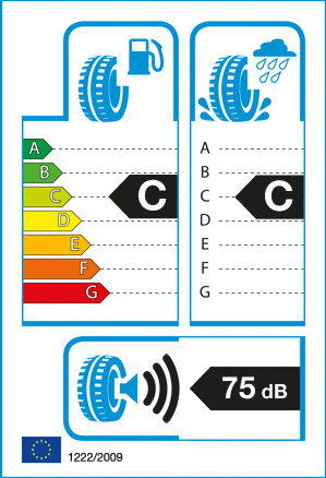 Michelin PILOT ALPIN PA4 295/30 R19 100 W