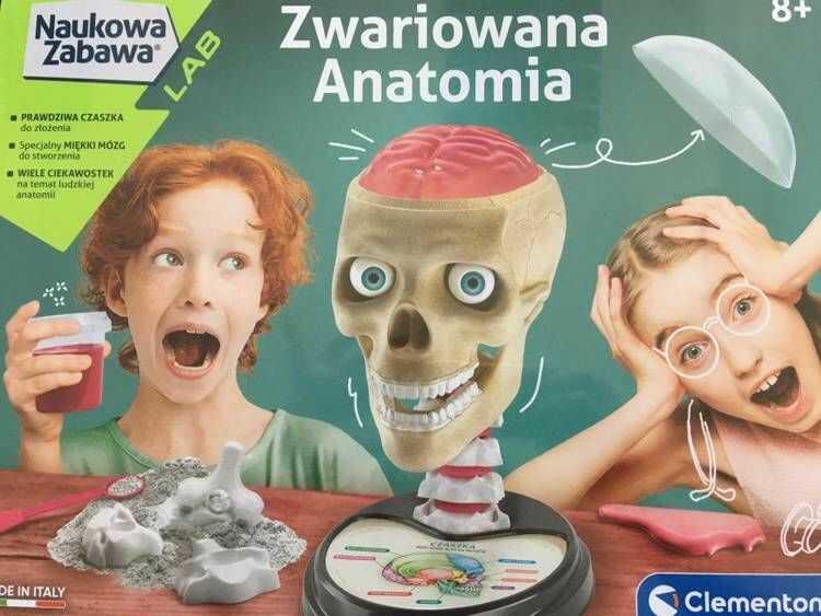 Zwariowana Anatomia 50697 - Clementoni