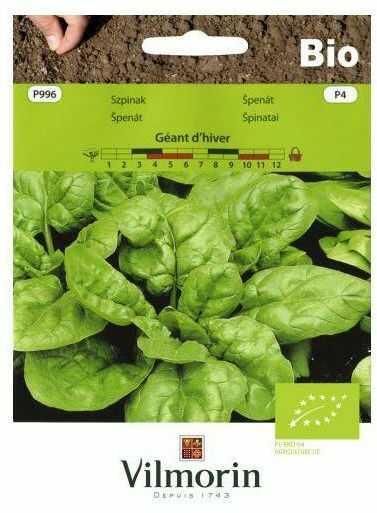 Szpinak GEANT D''HIVER BIO nasiona ekologiczne 10 g VILMORIN