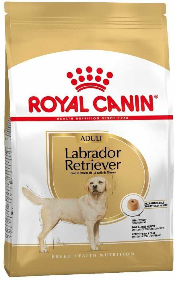 Royal Canin Adult Labrador Retriever 12kg Do każdego zamówienia dodaj prezent. Bez dodatkowych wymagań - tak łatwo jeszcze nie było!