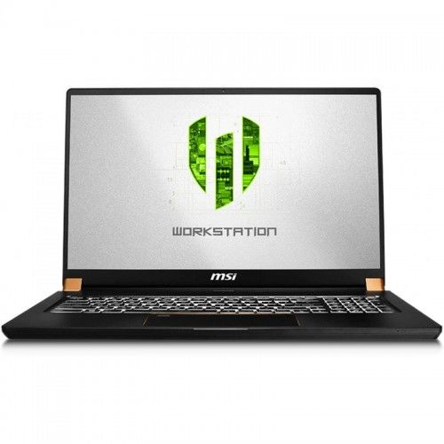 "MSI Notebook 17.3"" (43,94cm) MSI WS75 10TM-498 Mobile Workstation Space Grey (0017G3-498)"