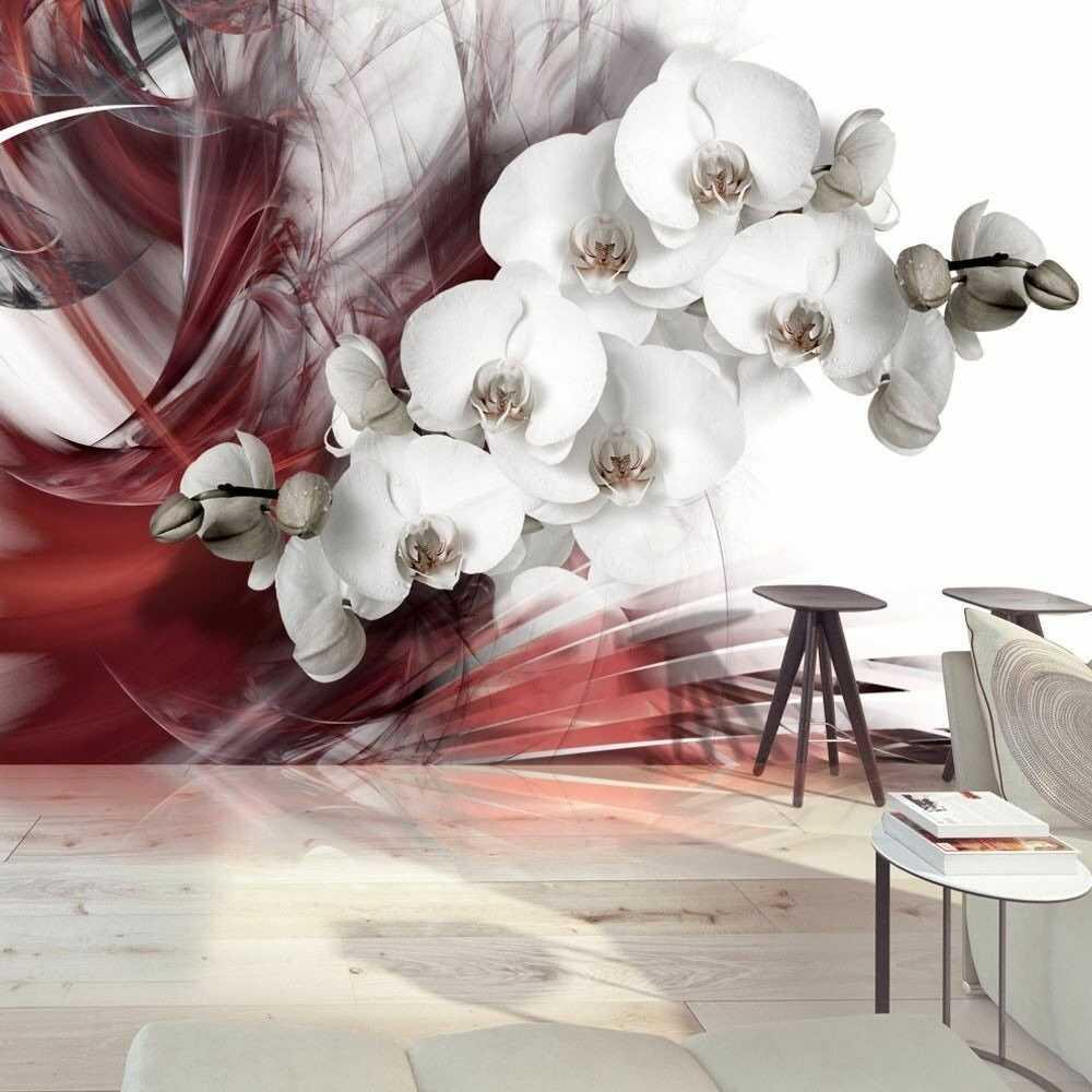 Fototapeta - orchidea w czerwieni