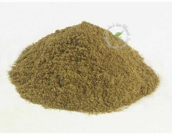Przyprawy i zioła - Anyż zielony w proszku Bio 50g, - 40008