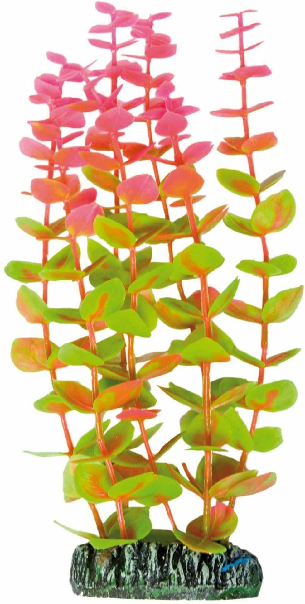 ICA AP1004 rośliny wodne plastikowa alternanthera