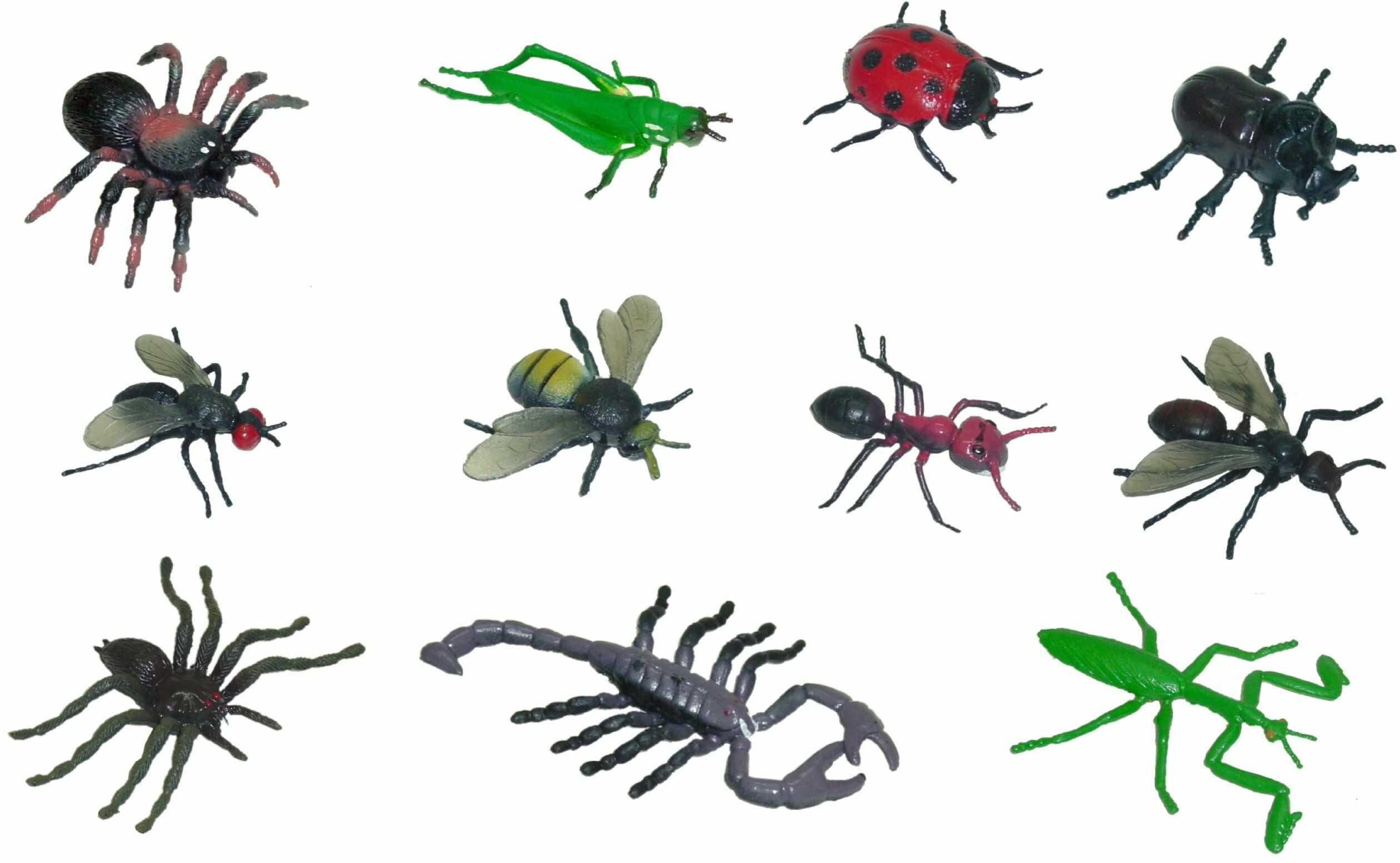 Miniland 50.27480 owady 12 figurek, wielokolorowe