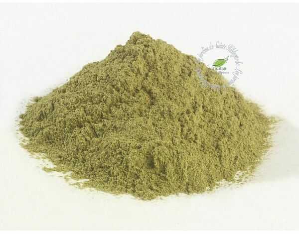 Przyprawy i zioła - Hyzop liście 35g Bio*, - 40037