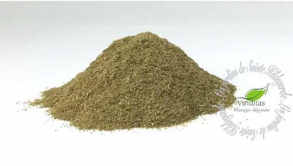 Przyprawy i zioła - Hyzop w proszku 35g Bio*, - 40037P