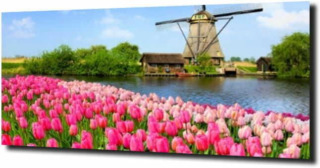 obraz na szkle, panel szklany Tulipany 10 120X60
