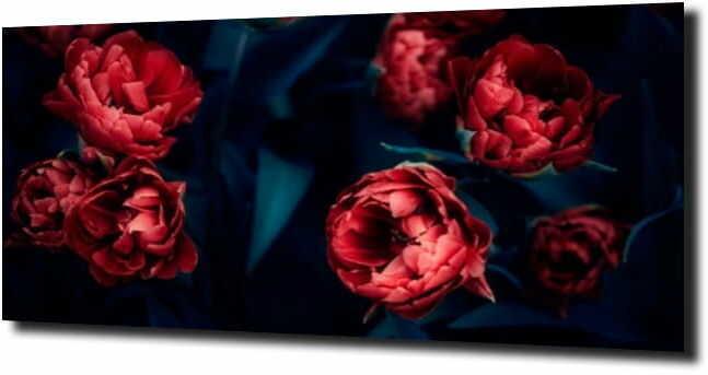 obraz na szkle, panel szklany Tulipany 12 125X50