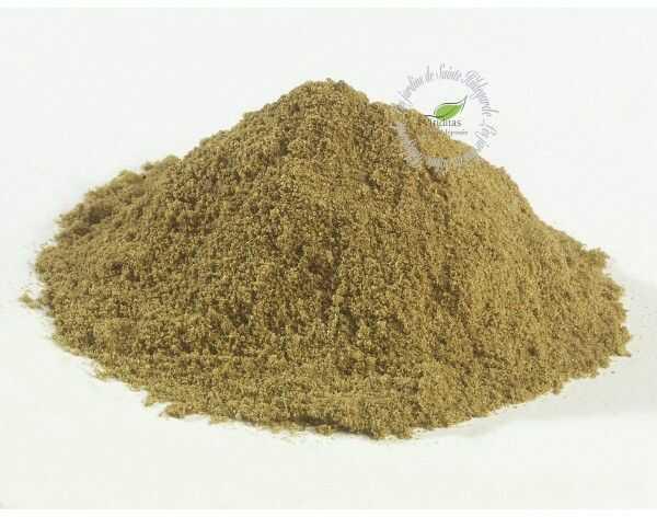Przyprawy i zioła - Koperek ogrodowy w proszku Bio 40g*, - 40007