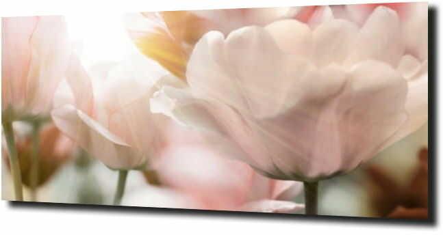 obraz na szkle, panel szklany Tulipany 25 125X50