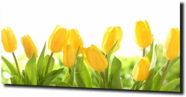 obraz na szkle, panel szklany Tulipany 26 120X60
