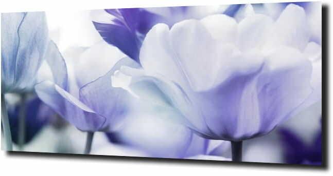 obraz na szkle, panel szklany Tulipany 29 125X50