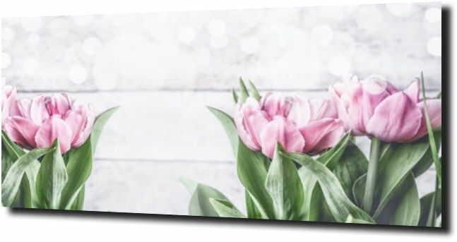 obraz na szkle, panel szklany Tulipany 31 125X50
