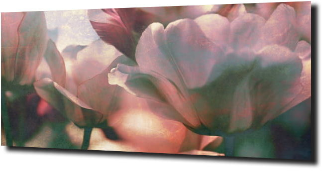 obraz na szkle, panel szklany Tulipany 36 125X50