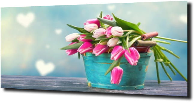 obraz na szkle, panel szklany Tulipany 39 125X50