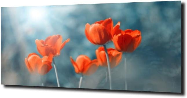 obraz na szkle, panel szklany Tulipany 40 120X60