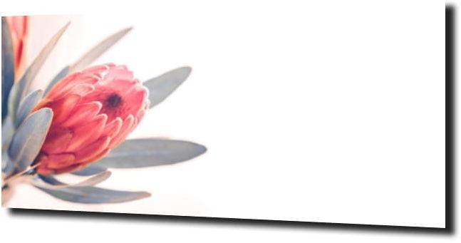 obraz na szkle, panel szklany Tulipany 44 125X50