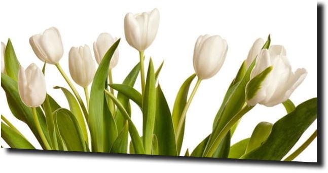 obraz na szkle, panel szklany Tulipany 45 125X50