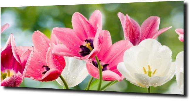 obraz na szkle, panel szklany Tulipany 47 120X60