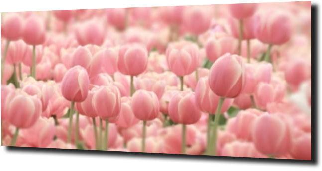 obraz na szkle, panel szklany Tulipany 49 120X60