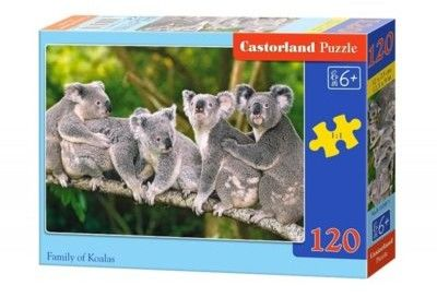 Puzzle Castor 120 - Misie Koala, Family of Koalas