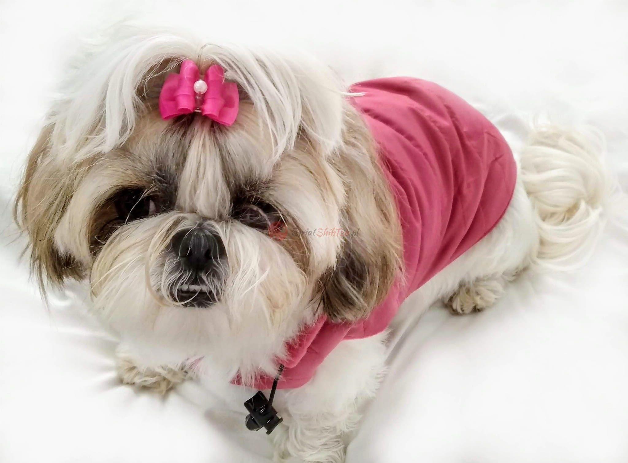 Ręcznie szyta kurtka sportowa różowa