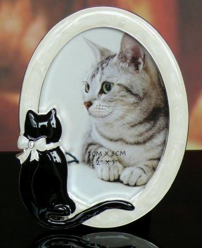 Ramka na zdjęcie z kotem owalna