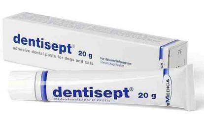 Dentisept pasta dla psów i kotów 20g