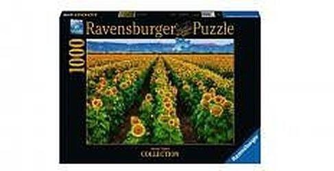 Puzzle Ravensburger 1000 - Pole słoneczników, Fields of Gold