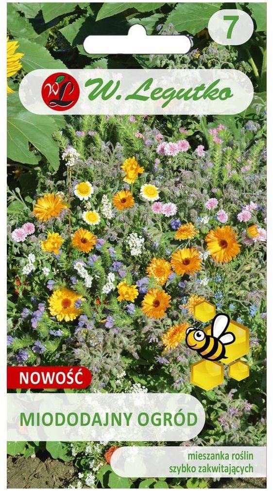 Mieszanka roślin miododajnych W.LEGUTKO