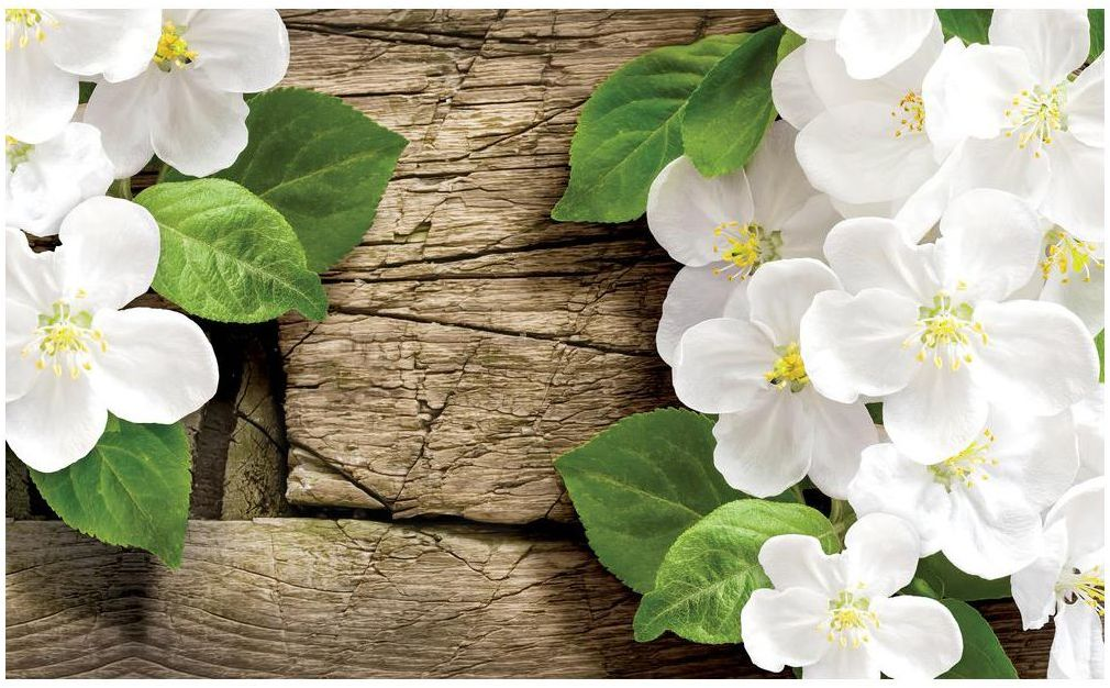 Fototapeta Białe Kwiaty 368 x 254 cm