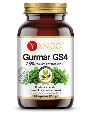 Gurmar GS4  - 75% kwasów gymnemowych - 60 kaps Yango